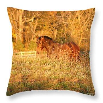 Throw Pillow featuring the photograph Jonathan by Carol Lynn Coronios