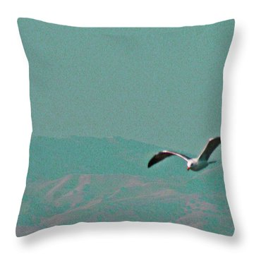 Jonathan Throw Pillow