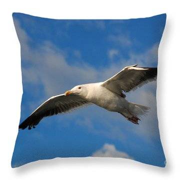 Jonathan Livingston Throw Pillow
