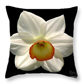 Throw Pillow featuring the photograph Jonquil 1 by Rose Santuci-Sofranko