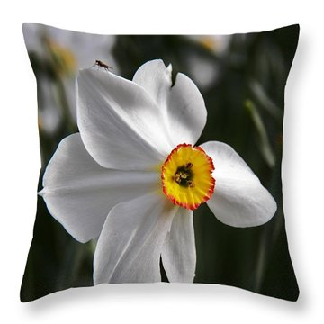 Throw Pillow featuring the photograph Jonquil by Judy Via-Wolff