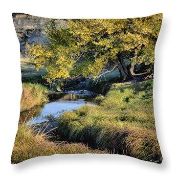 Jordan Creek Autumn Throw Pillow
