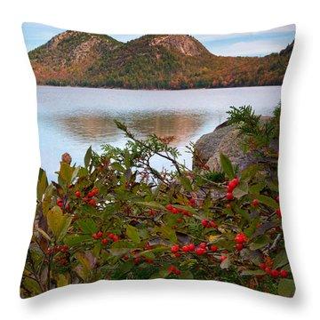 Jordan Pond With Berries Throw Pillow