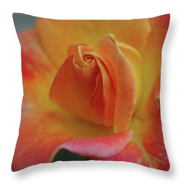 Joseph's Coat Climbing Rose Throw Pillow by Robyn Stacey