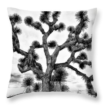 Throw Pillow featuring the photograph Joshua Black And White by Benjamin Yeager