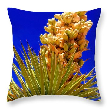 Joshua Bloom By Diana Sainz Throw Pillow