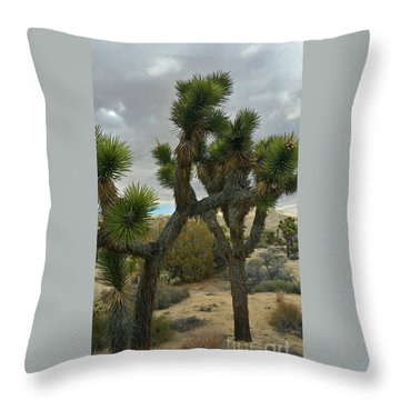 Joshua Cloudz Throw Pillow by Angela J Wright