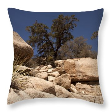 Joshua Tree Throw Pillow by Amanda Barcon