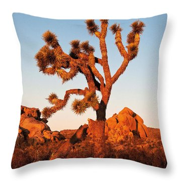 Throw Pillow featuring the photograph Joshua Tree At Sunset by Mae Wertz