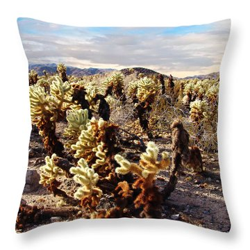 Joshua Tree National Park 3 Throw Pillow by Glenn McCarthy Art and Photography
