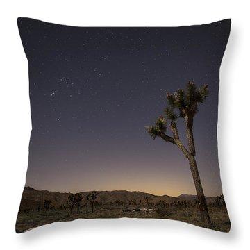 Joshua Tree Night 3 Throw Pillow