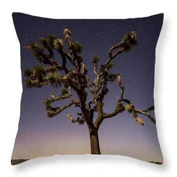 Joshua Tree Night Throw Pillow by Lee Kirchhevel