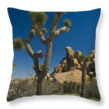 California Joshua Trees In Joshua Tree National Park By The Mojave Desert Throw Pillow