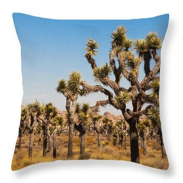 Throw Pillow featuring the photograph Joshua Trees  by Penny Lisowski