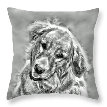 Throw Pillow featuring the photograph Josie by Kenny Francis