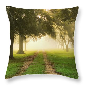 Journey Into Fall Throw Pillow