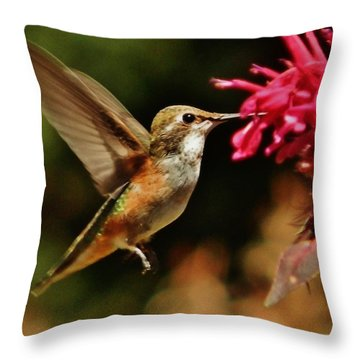 Joy Giver Throw Pillow by VLee Watson