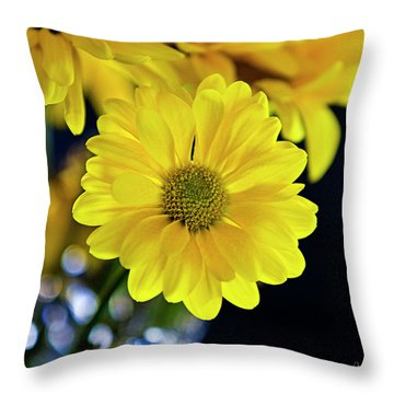 Joy Throw Pillow by Scott Pellegrin