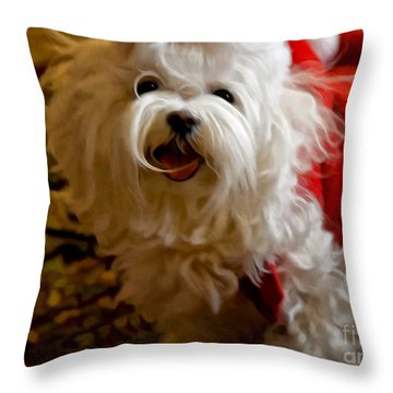 Joy To The World Throw Pillow by Lois Bryan