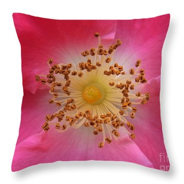 Joyful Celebration Throw Pillow