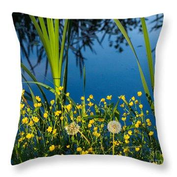 Joys Of Summer Throw Pillow