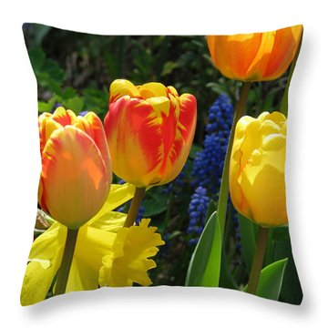Jubilance Throw Pillow by Rory Sagner