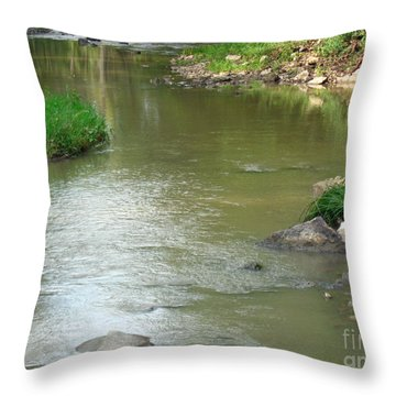 Jubilee Creek Throw Pillow