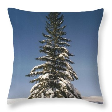Judge's Christmas Throw Pillow