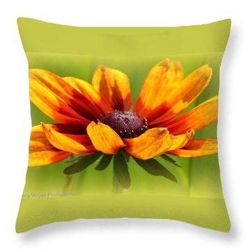 Judy Throw Pillow