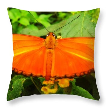 Throw Pillow featuring the photograph Julia by Clare Bevan