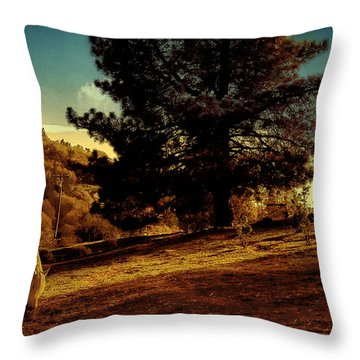 Springtime California Landscape Throw Pillow