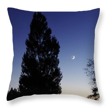 Julian Night Sky 2013 A Throw Pillow