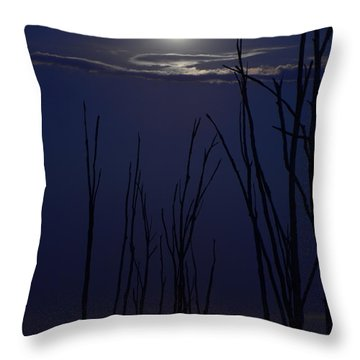 July 2014 Super Moon Throw Pillow by Raymond Salani III