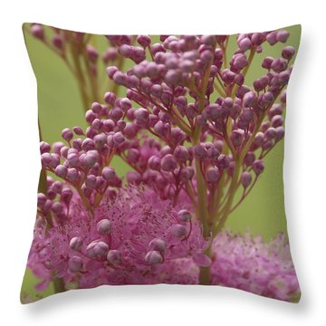 July Astilbe Throw Pillow