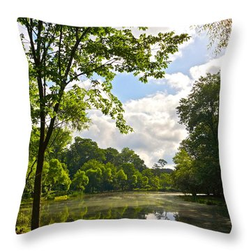 July Fourth Duck Pond With Goose Throw Pillow by Byron Varvarigos