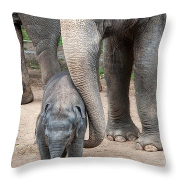 Jumbo Love Throw Pillow