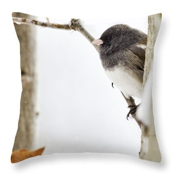 Junco And Oak Throw Pillow