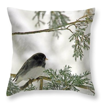 Throw Pillow featuring the photograph Junco In Snowstorm by Paula Guttilla