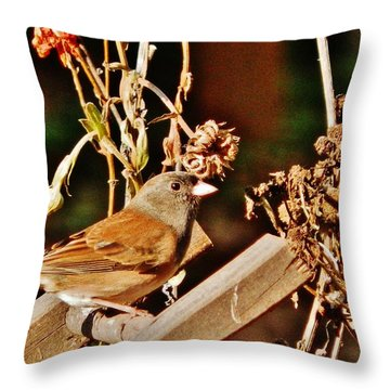 Throw Pillow featuring the photograph Junco Jaunt 2 by VLee Watson