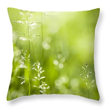 June Green Grass  Throw Pillow by Elena Elisseeva