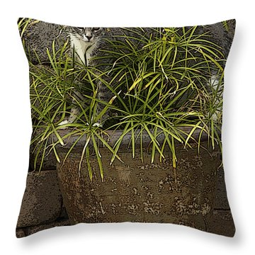 Jungle Kitty All Profits Go To Hospice Of The Calumet Area Throw Pillow