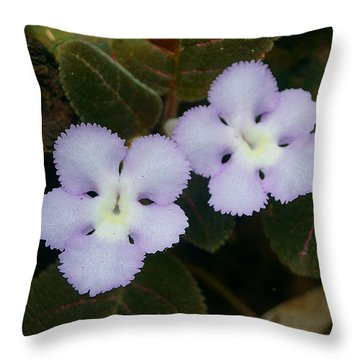 Throw Pillow featuring the photograph Jungle Wildflower by Blair Wainman