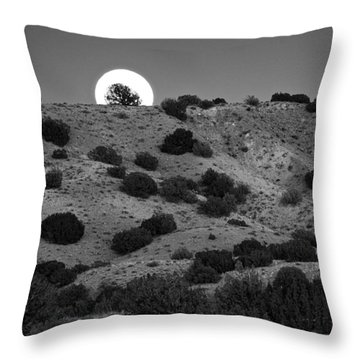 Juniper At Moonrise Throw Pillow