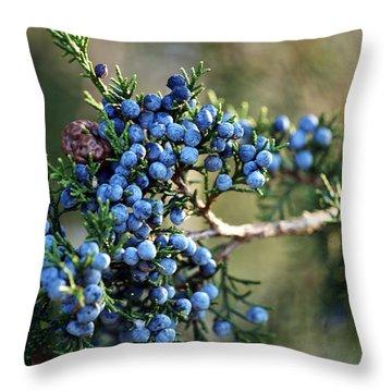 Juniper Berries Throw Pillow