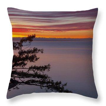 Juniper Point Throw Pillow