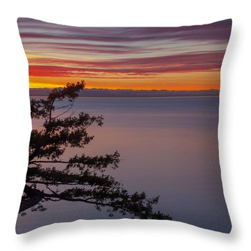 Juniper Point Throw Pillow by Jacqui Boonstra