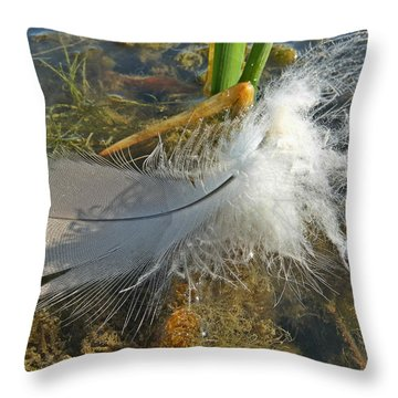 Just A Feather Throw Pillow by Scott Kingery