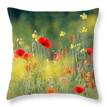 Just A Perfect Day Throw Pillow