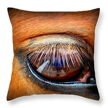 Just A Reflection Throw Pillow