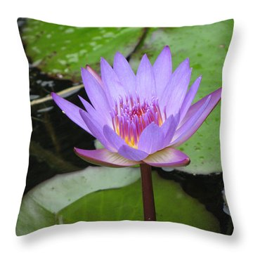 Just A Water Lily  Throw Pillow